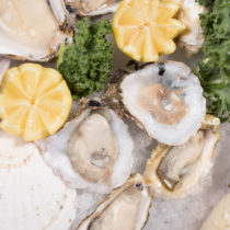 Sierra Gold Seafood Oysters